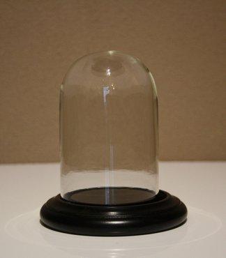 Hoog: 11 cm x Breed: 7,5 cm Glazen Stolp