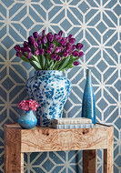 Thibaut Modern Resource 2