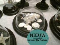 Nieuwe glazen stolpen collectie via Luxury By Nature