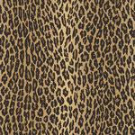 ralph lauren aragon behang
