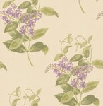 behang cole and son madras violet
