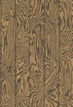 Behang Cole And Son Zebrawood 107-1002 Curio Collectie Luxury By Nature