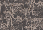 Behang Cole and Son Cow Parsley 66-7048 Contemporary Restyled Luxury By Nature