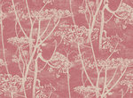 Behang Cole and Son Cow Parsley 66-7052 Contemporary Restyled Luxury By Nature