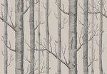 Woods behang Cole and Son 112-3009