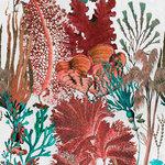 Mind the Gap Coral Reef Behang WP20299