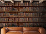 Mind the Gap book shelves boeken behang boekenkast behang wp20112