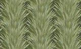ARTE Abanico 34001 behang Selva behang collectie