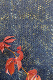 Elitis Laca Salvaje Behang Natural Mood behang collectie