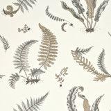GP & J Baker Ferns Behang Signature Wallpapers BW45044/4