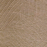 Tissage Mahieu Cubro Behang