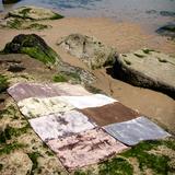 BIC Carpets Vloerkleed Haven Kleuren