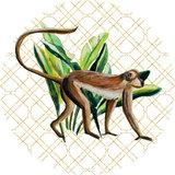 Catchii Wild Jungle Stories Monkey Behangcirkel