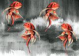 Catchii Koi Fish Art Behang - Grijs