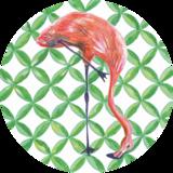 Catchii Flamingo Behangcirkel