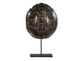 Schildpadschild Op VoetLandschildpad 22 cm