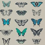 behang Harlequin papilio Amazilia-Wallpapers 111078
