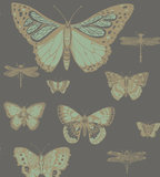 behang cole and son butterflies and dragonflies whimsical 103 15067