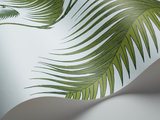 Behang Cole and Son Palm Leaves 66-2010 Behangpapier Luxury By Nature Contemporary Selection detail