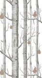woods & pears behang  95/5027 cole son luxury by nature