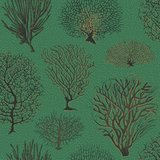 Behang Cole and Son Seafern 107-2007 Curio Luxury By Nature 1.jpg