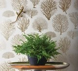 Behang Cole and Son Seafern Curio Collectie Luxury By Nature sfeer 2 aangepast