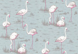 Behang Cole and Son Flamingos 66-6044 Contemporary Selection Luxury By Nature