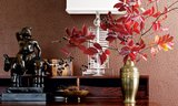 Struisvogel Leer Behang Thibaut Sfeer Luxury By Nature