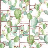 Coordonne Cactus Behang Chumbera 5900023 kaktussen Anima Jungalow trend Luxury By Nature 2