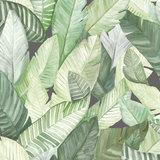 Tropisch Behang Banano Coordonnee 5900021  Anima Collectie Luxury By Nature