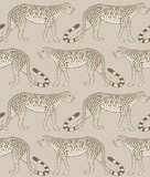 Cole and Son Leopard Walk behang 109/2012 Cole and Son