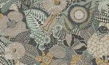 ARTE Behang Euphoria Curiosa behang collectie 13551