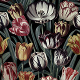 Mind the Gap Tulipa Behang Designer Wallpaper 2017 WP20177