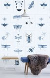 Mind the Gap Entomology Behang WP20235