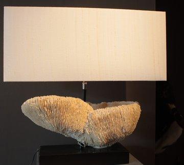 Lamp met een Koraalvoet