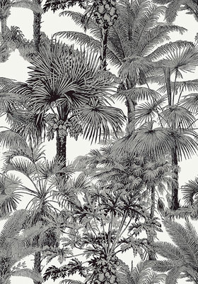 Thibaut Palm Botanical Behang Zwart