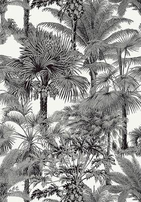 Thibaut Palm Botanical Behang 02
