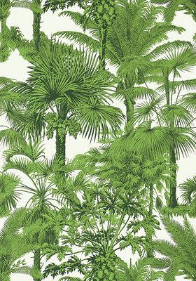 Thibaut Palm Botanical Behang 03