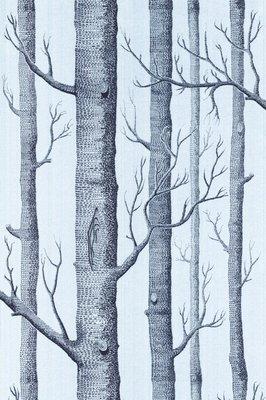 Woods -