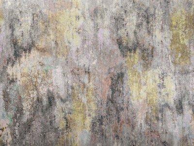Zimmer + Rohde Surface behang
