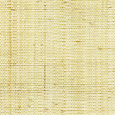 CMO Paris Raphia Behang - Raffia Wallcovering