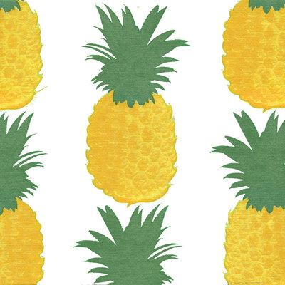 Francoise Paviot Servet Ananas
