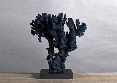 Decoratief Blauw Koraal Op Zwarte Voet
