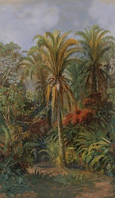 Pierre Frey Le Paradis Aux Mille Fleurs Behang
