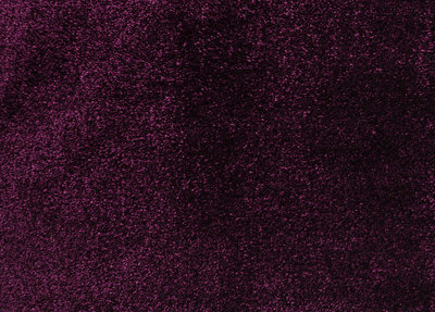 Carpetlinq Miami Vloerkleed 45 mm Violet
