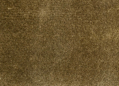 Carpetlinq Miami Vloerkleed 45 mm Naturel Goud