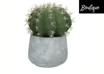 Kunst Cactus in Cementen Pot - 26 cm
