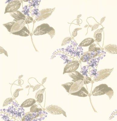 Madras Violet