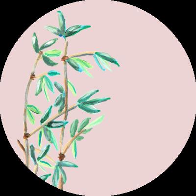 Catchii Roze Bamboe Behangcirkel