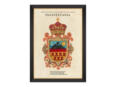 Mind The Gap Transylvania Saxon Crest Wanddecoratie